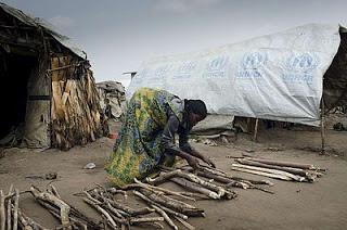 Una mujer congoleña desplazada organiza la leña que ha recolectado. Las mujeres son expuestas al riesgo de violencia sexual al recoger la leña necesaria para el hogar.  © ACNUR/ M.Sibiloni