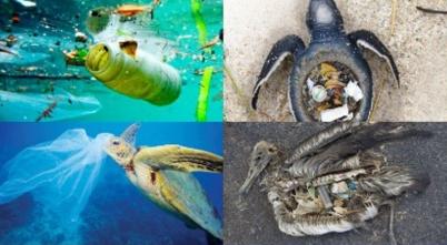 Mas plastico que peces en el mar